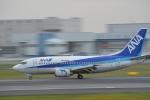 OKさんが、伊丹空港で撮影したANAウイングス 737-5L9の航空フォト(写真)