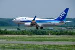 パンダさんが、女満別空港で撮影した全日空 737-781の航空フォト(写真)