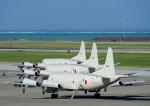 那覇空港 - Naha Airport [OKA/ROAH]で撮影された海上自衛隊 - Japan Maritime Self-Defense Forceの航空機写真
