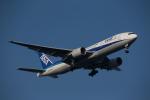 くるくもるさんが、羽田空港で撮影した全日空 777-281の航空フォト(写真)