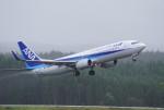 gomachanさんが、大館能代空港で撮影した全日空 737-881の航空フォト(写真)