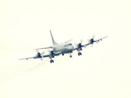 なまくら はげるさんが、厚木飛行場で撮影したアメリカ海軍 P-3C Orionの航空フォト(写真)