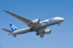 パンダさんが、羽田空港で撮影した全日空 787-8 Dreamlinerの航空フォト(飛行機 写真・画像)