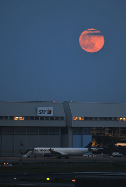 gucciyさんが、羽田空港で撮影したスカイマーク A330-343Xの航空フォト(飛行機 写真・画像)