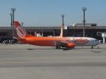 ライトレールさんが、サンパウロ・グアルーリョス国際空港で撮影したゴル航空 737-809の航空フォト(写真)