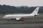 新城良彦さんが、成田国際空港で撮影したドイツ空軍 A310-304の航空フォト(飛行機 写真・画像)