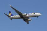 utarou on NRTさんが、羽田空港で撮影したスカイマーク 737-86Nの航空フォト(写真)