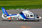 Dojalanaさんが、札幌飛行場で撮影したオールニッポンヘリコプター AS365N2 Dauphin 2の航空フォト(飛行機 写真・画像)