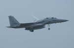 kij niigataさんが、千歳基地で撮影した航空自衛隊 F-15DJ Eagleの航空フォト(写真)
