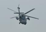 じーく。さんが、千歳基地で撮影した航空自衛隊 UH-60Jの航空フォト(飛行機 写真・画像)