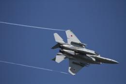 mikechinさんが、茨城空港で撮影した航空自衛隊 F-15J Eagleの航空フォト(写真)