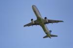 ANA744Foreverさんが、成田国際空港で撮影したエアプサン A321-131の航空フォト(写真)