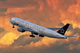 gucciyさんが、羽田空港で撮影した全日空 777-281の航空フォト(飛行機 写真・画像)