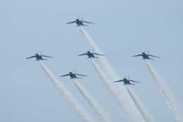kij niigataさんが、千歳基地で撮影した航空自衛隊 T-4の航空フォト(飛行機 写真・画像)