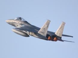 月明さんが、築城基地で撮影した航空自衛隊 F-15J Eagleの航空フォト(写真)
