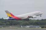 ANA744Foreverさんが、成田国際空港で撮影したアシアナ航空 A380-841の航空フォト(写真)