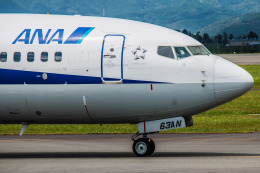 けんけんさんが、静岡空港で撮影した全日空 737-881の航空フォト(飛行機 写真・画像)
