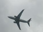 わたくんさんが、岩国空港で撮影したアメリカ海軍 C-40A Clipper (737-7AFC)の航空フォト(写真)