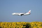 tupolevさんが、女満別空港で撮影したJALエクスプレス 737-846の航空フォト(写真)