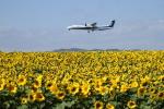 tupolevさんが、女満別空港で撮影したANAウイングス DHC-8-402Q Dash 8の航空フォト(写真)