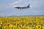 tupolevさんが、女満別空港で撮影した全日空 A320-211の航空フォト(写真)