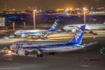 こだしさんが、羽田空港で撮影した全日空 787-8 Dreamlinerの航空フォト(写真)