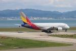 uhfxさんが、関西国際空港で撮影したアシアナ航空 A380-841の航空フォト(飛行機 写真・画像)
