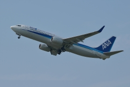 qooさんが、高松空港で撮影した全日空 737-881の航空フォト(飛行機 写真・画像)