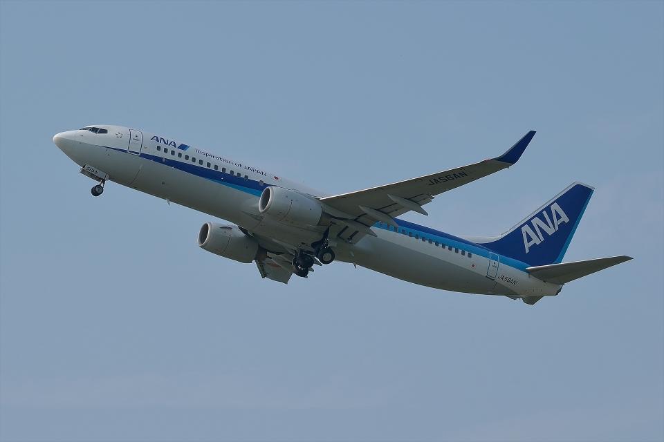 qooさんの全日空 Boeing 737-800 (JA56AN) 航空フォト