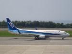 westtowerさんが、函館空港で撮影した全日空 737-881の航空フォト(写真)