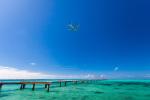 しゅあさんが、下地島空港で撮影したANAウイングス 737-54Kの航空フォト(写真)