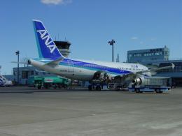 nomalblueさんが、稚内空港で撮影した全日空 A320-211の航空フォト(飛行機 写真・画像)