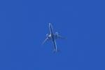 forgingさんが、厚木飛行場で撮影した全日空 787-9の航空フォト(飛行機 写真・画像)