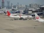 ハピネスさんが、中部国際空港で撮影したJALエクスプレス 737-846の航空フォト(飛行機 写真・画像)