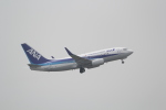 ANA744Foreverさんが、成田国際空港で撮影した全日空 737-781/ERの航空フォト(写真)