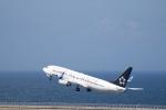 小鉢さんが、中部国際空港で撮影した全日空 737-881の航空フォト(飛行機 写真・画像)