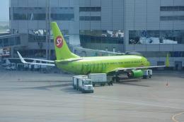 航空フォト:VP-BDF S7航空 737-800