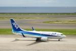 小鉢さんが、中部国際空港で撮影した全日空 737-781の航空フォト(飛行機 写真・画像)