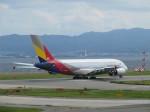 aquaさんが、関西国際空港で撮影したアシアナ航空 A380-841の航空フォト(写真)