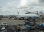 シフォンさんが、アムステルダム・スキポール国際空港で撮影したキャセイパシフィック航空 A340-313Xの航空フォト(写真)