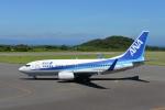 Masashi717さんが、大島空港で撮影した全日空 737-781の航空フォト(写真)