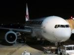 メヘンサルの猿さんが、伊丹空港で撮影した日本航空 777-246の航空フォト(写真)