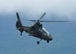 じーく。さんが、東富士演習場で撮影した陸上自衛隊 OH-1の航空フォト(写真)