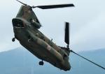 じーく。さんが、東富士演習場で撮影した陸上自衛隊 CH-47JAの航空フォト(写真)