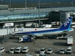 Super Dolphinさんが、羽田空港で撮影した全日空 A320-211の航空フォト(飛行機 写真・画像)
