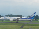 anothersky777さんが、鹿児島空港で撮影した全日空 787-8 Dreamlinerの航空フォト(写真)