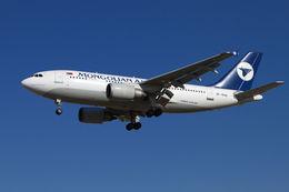 航空フォト:JU-1010 MIATモンゴル航空 A310-300