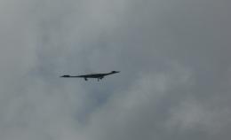 Boeing 787-981さんが、アンダーセン空軍基地で撮影したアメリカ空軍 B-2A Spiritの航空フォト(飛行機 写真・画像)