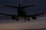 アイスコーヒーさんが、伊丹空港で撮影したANAウイングスの航空フォト(写真)