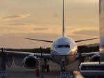 sunrise21さんが、釧路空港で撮影した全日空の航空フォト(写真)